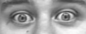 codigos-acao-facial-au05