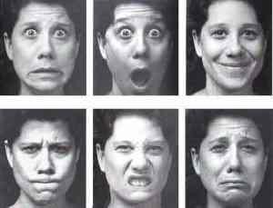 Emoções Básicas - Mosaico Histórico - Dr. Paul Ekman